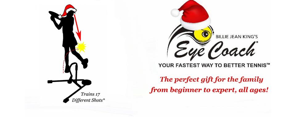 Holiday Website banner